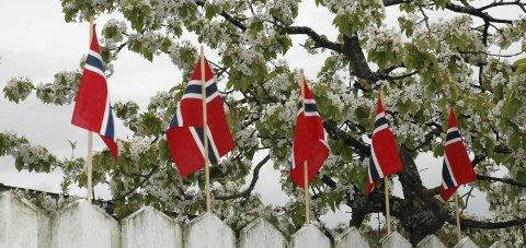 RØDT, HVITT OG BLÅTT: Tar du et fint bilde i nærmiljøet eller av lokalbeboere på 17. mai, så del det gjerne med oss! Arkivfoto: Nina Schyberg Olsen