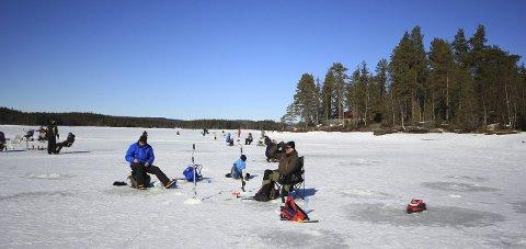 FLOTTE RAMMER: Om det ikke ble så mye fisk, var det lykke lell, rapporterer villmarksklubben Villtontingen fra helgas arrangement på Skumsjøen. Foto: Innsendt