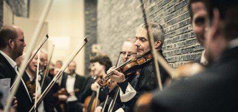 Godt nytt år: Det Norske Kammerorkester åpner Resonans-året 2018 med konsert i Biri kirke søndag kveld. pressebilde
