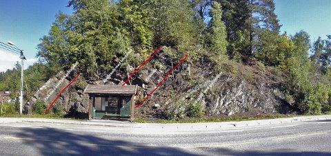 OSLOFELTET: Bak bussstoppet ved bensinstasjonen langs Slemmestadveien finnes det utallige med tydelige spor etter urtidens liv.