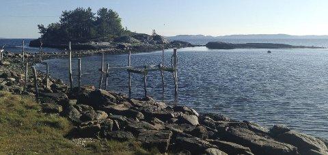 KNAPPHET: Det er knapphet på tilgjengelighet på strandsonen i indre Oslofjord.