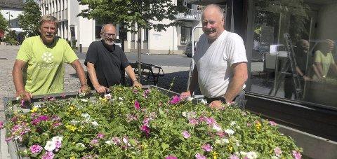 Flott innsats: Oddvar Pedersen, John G. Bergh og Tom Christensen sørger for å plassere ut blomsterurner.