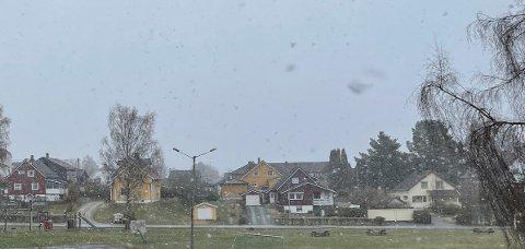 Det snør sidelengs i Kongsvinger onsdag morgen.
