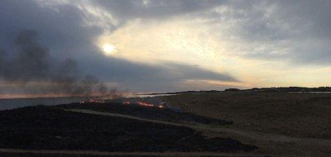 BRANN: Det brant i marehalmen like ved Ogna Camping.