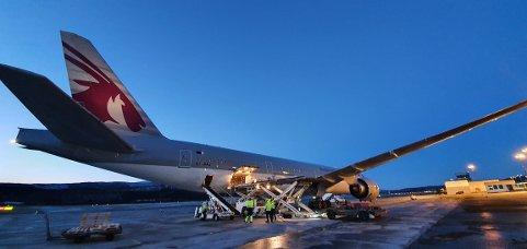 Laster laks: Her laster flyet fra Qatar Airways laks fra blant annet Lofoten ment for markedet i Asia.