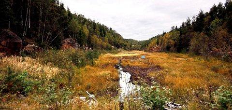 NEI: Naturvernforbundet sier nei til etableringen av en ny skytebane i Avgrunnsdalen på Hurumlandet.