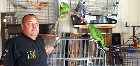 PASSER PÅ: Raymond Hammerens papegøyer får med seg det meste, og det nytter ikke snike rundt hushjørnene der i svarte natta uten å bli oppdaget.