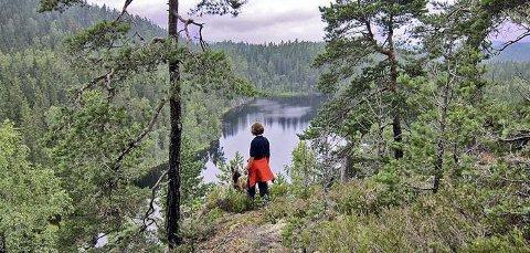 NASJONALPARK: Rådmannen i Oppegård er positiv til å utrede Østmarka som nasjonalpark.