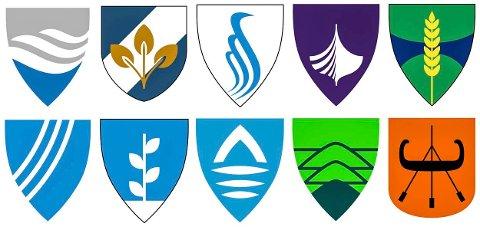 FINALEHEATET: Dette er de ti fylkesvåpen-forslagene som er plukket ut til finalen. Ett av dem kan nå helt til topps.