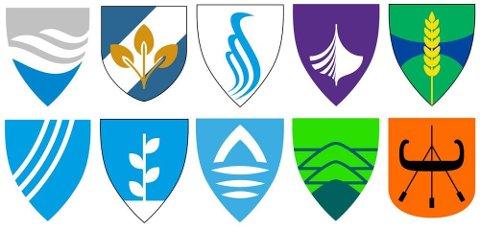 Et av disse  forslagene vil bli Vikens offisielle fylkesvåpen.
