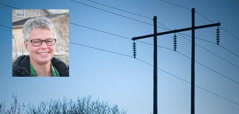 Kommunikasjons- og kundesjef Siri Sund i Lofotkraft AS sier at strømbruddene kunne vært flere og langt alvorligere hvis ikke strømnettet hadde blitt utbedret de siste årene.