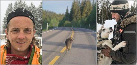 USIKRE: Hundekjørerne Jan Kåre Heiberg (t.v.) og Thomas Wærner er både usikre på og uenige om hva slags dyr som ble observert i Hunndalen onsdag morgen.