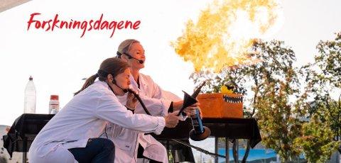 FESTIVAL: Forskningsdagene er en landsdekkende festival. 22. september braker det løs i Gjøvik.
