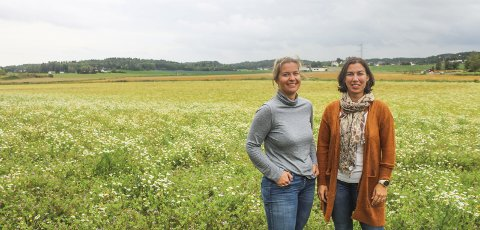 Johanne Henriksen og Ida Henriksen Wivestad forteller at de ønsker å bygge en bolig med nærings- eller landbruksmuligheter på jordet sør for Tinghaug.– Dette er en god løsning for å plastre på situasjonen for oss selv og faktisk bruke området til noe.