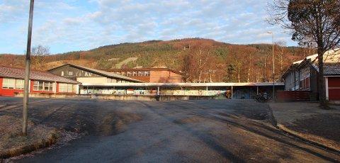 Nytt skoleareal for Fjelltun skole skal planlegges samlet i ett bygg med maksimalt fire etasjer.