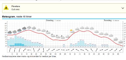 NEDBØR: Her er en skjermdump fra yr.no for Holmestrand tatt klokka 08.00 tirsdag.