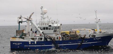 """SER SILD: Tor-Gunnar Kransvik på """"Bernt Oskar"""" sier de ser mye sild. Dette bildet er ikke tatt under sildefiske."""