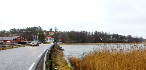 GROR IGJEN: Det har lenge vært påpekt at Myrasundet mellom Føynland og Husøy er i ferd med å gro igjen.
