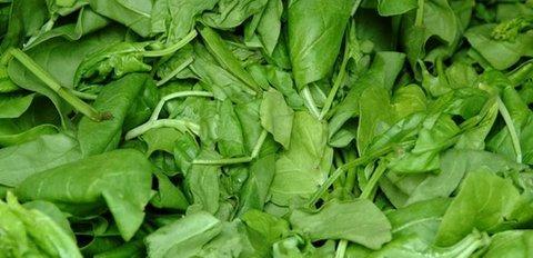 Ferdigvasket spinat er trolig årsak til det nasjonale sykdomsutbruddet, melder Matportalen.