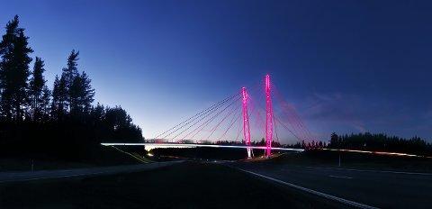 Kolomoen bru over E6 i Stange er farget rosa i hele oktober.