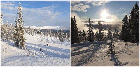 Det tyder på en strålende skihelg i fjellet. Det har kommet nysnø og det varsles om kuldegrader og sol. Disse bildene  ble tatt på Tempelseter onsdag ettermiddag.