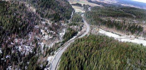 GRISGRENDT: Kompveien og skogene i Aurskog-Høland kan være et godt sted for kriminelle å skjule seg. Bildet er kun ment som en illustrasjon til saken.