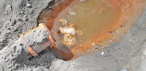 KLOAKKSJOKK PÅ STRANDA: Slik så det ut på stranda i Solviken da kloakkanlegget sviktet – og kloakk ble pumpet rett ut på sandstranda. Nå gjør Solviken feriehjem tiltak for å hindre at det skal skje igjen.
