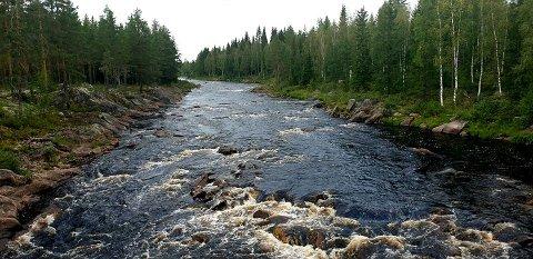 MINDRE VANN: Terjsebæk frykter for vannstanden og de gode fiskemulighetene i Flisa-elva dersom vannet øverst i vassdraget føres mot Rena-elva.