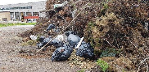 POSER: Her har det gått litt fort i svingene for enkelte som har levert hageavfall.