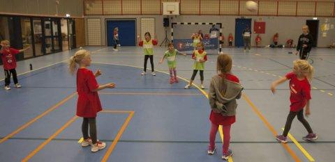 FLERE UNGE: Region Innlandet opplever en økning i antall håndballag på Hadeland. Illustrasjonsfoto