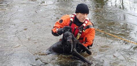 GIKK GJENNOM ISEN: Brannvesenet måtte redde en hund som hadde falt i vannet i Sætre fredag.