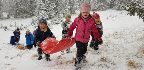 Daglig leder i Solsida Barnebeite barnehage, Elisabeth Nilsen, er opptatt av at barna får leke fritt i naturen.