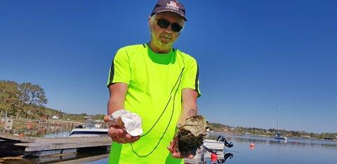 INVASJON: Terje Bådin Svendsen fra Larvik slår nå alarm om den store mengden med stillehavsøsters ute i fjorden. – Nå var jeg akkurat en tur sør i Ommane, det er kanskje den fineste stranden vi har i Larvik. Det er spor av østers på fjellveggene rundt omkring, sier Svendsen.