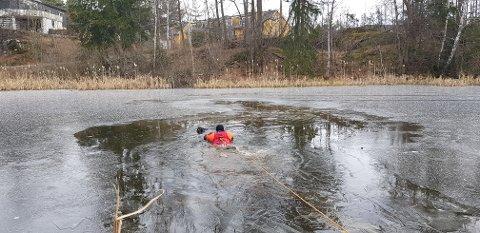 REDDET: Hunden lå i vannet i 20 minutter før brannvesenet ankom stedet og reddet hunden.