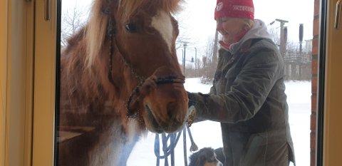 BESØKTE SANDETUN: Anne Burdahl stilte med to hester og en hund under besøket..