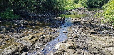 NESTEN IKKE VANN: Elvene i Hagnesvassdraget trenger sårt mer nedbør.