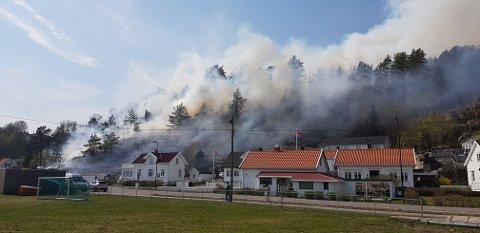 KRAFTIG SKOGBRANN: Det brenner i store deler av lia over Solnesveien i Melsomvik.