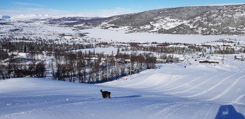 I Vaset Skiheiser er bikkja på plass.  Bakkene er nypreparert og klare til å ta imot skiløpere og brettkjørere.