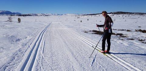 Tor Berge gleder seg over strålende vær og nyoppkjørte løyper ved Valtjednstølen.