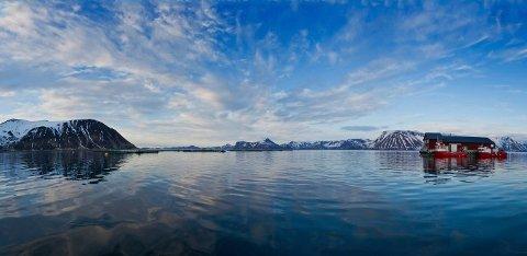 LAKSERØMMING: Her er Cermaqs anlegg i Husfjord på Sørøya. Foto: Cermaq