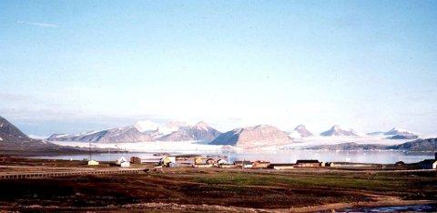 Sysselmannen på Svalbard foreslår nå at Bjørnøya blir fredet som naturreservat.  (NTB-arkiv).