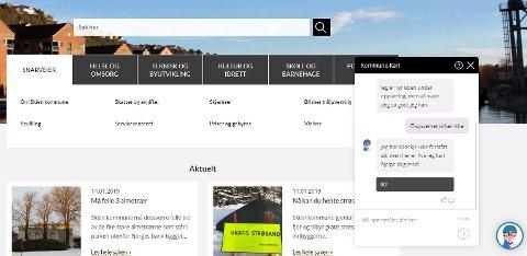 Skjermdump av Skien kommunes nettside.