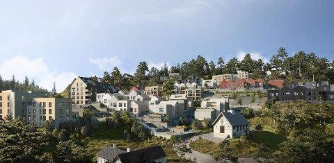 Bybo ser for seg en småhusbebyggelse inspirert av bebyggelsen på Nordnes.