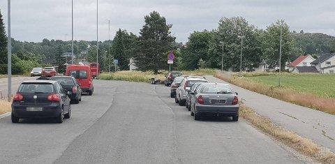AVSKILTET: En rekke biler ble avskiltet i storkontrollen onsdag kveld. Her fra kontrollen på Rolvsøy.