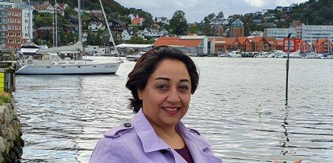 Parissa Hamedan-Nejad, Fylkesordfører kandidat Sosialliberalt Parti