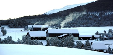 Natt til mandag ble det målt minus 29,4 grader på målestasjonen Leirflaten i Sel. Det er den laveste temperaturen som er målt i Gudbrandsdalen hittil i vinter.