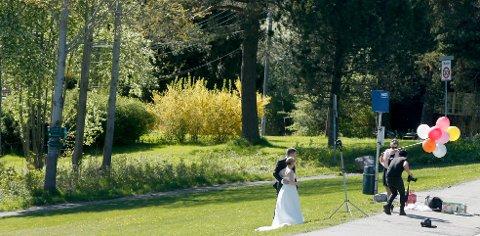 Det er mange som blir ektepar i mai og juni måned. I Haugesund kan man i tillegg til kirkene vies ute i friluft, enten i Byparken eller på Krosshaugen. Foto: Terje Pedersen / NTB scanpix