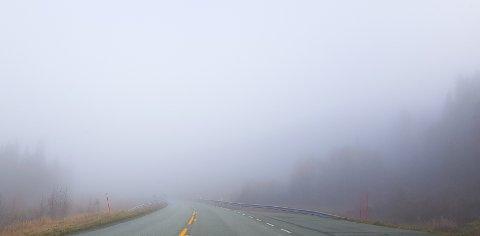 TÅKE: Hele Vefsn fikk oppleve tåka på mandag, og bilistene hadde ikke den beste sikten på veiene.