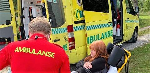 DRAMATISK: Det ble en dramatisk mandag i Dalsroa for Kari Meyer. Sørhølendingen fikk et vepsestikk som kunne fått alvorlige konsekvenser.