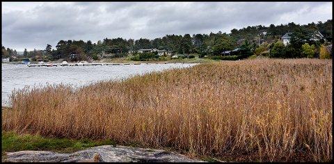 Sarpsborg tingrett avgjorde tidligere i høst at grunneieren av Vestre Grimsøen, Dagfinn Galland, er i sin fulle rett til å heve festeavgiften på til sammen 31 hyttetomter med flere hundre prosent. Hytteeierne har akseptert skjønnet fra tingretten.